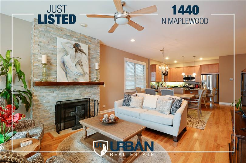 Gorgeous Duplex Home Just Listed in West Town