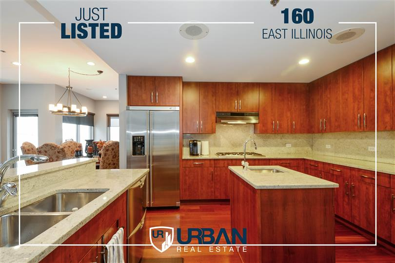 Extraordinary Condo in Boutique Building Just Listed!