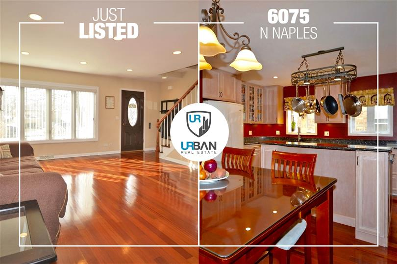 Custom-Built 2-Story Brick Home Just Listed in Norwood Park