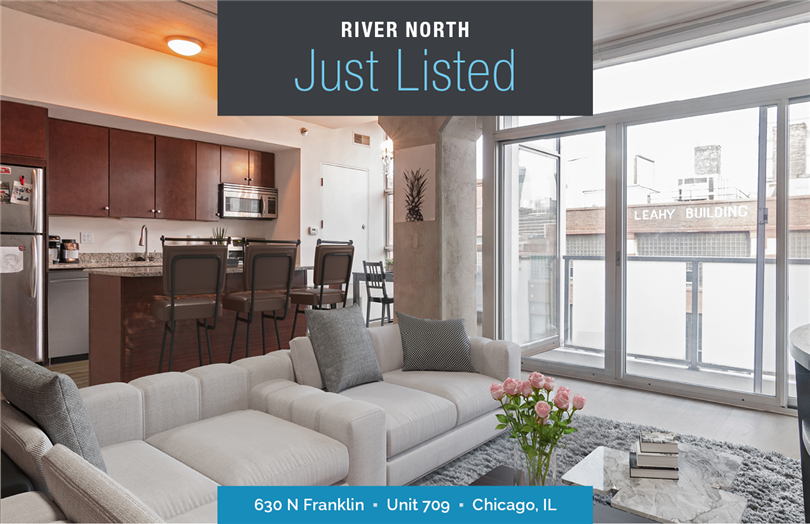 Contemporary Two Bedroom in Heart of River North