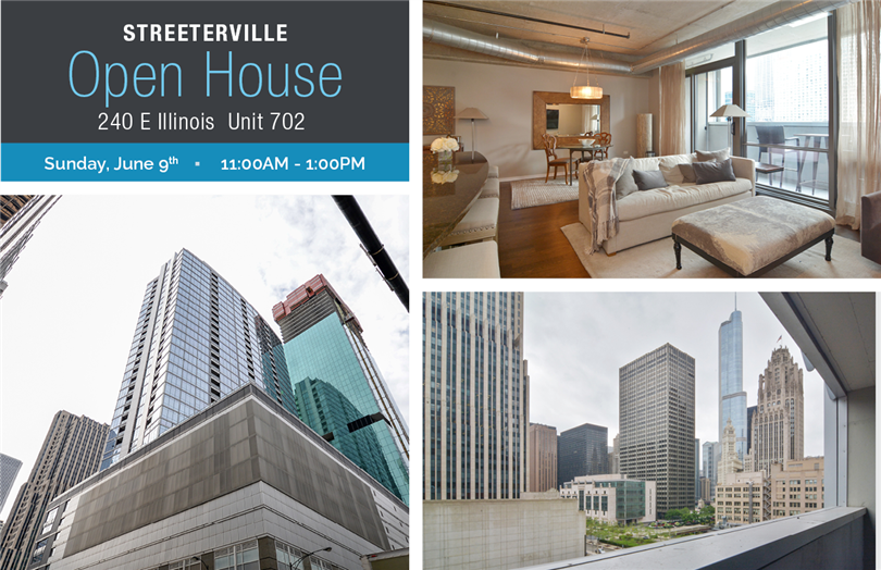 Open House - Spacious Condo in Streeterville
