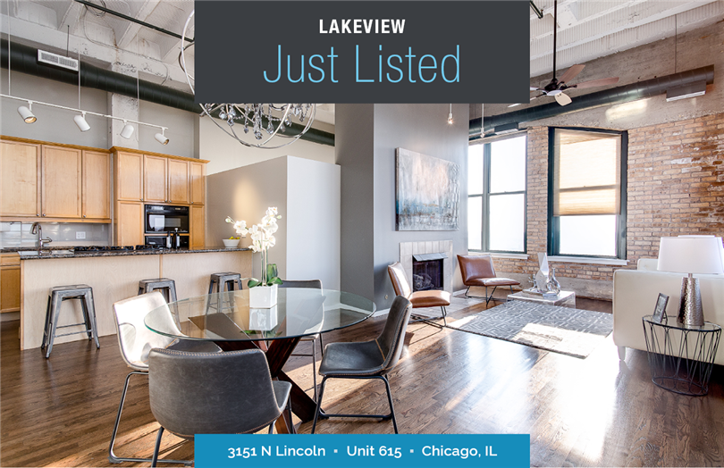 Exquisitely Maintained & Updated Loft Just Listed in Lakeview
