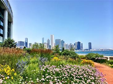 Chicago's Top-Selling Neighborhoods of 2016