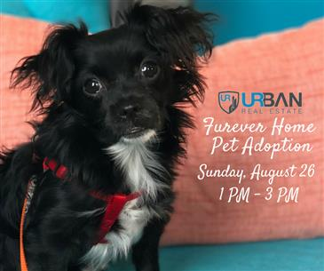 Join us for Urban's Furever Home Pet Adoption Event