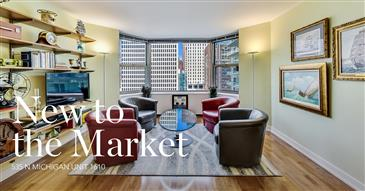 Magnificent Mile Renovated Studio